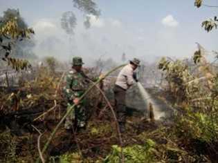 Karhutla di Sungai Apit, Petugas Bergerak Cepat Lakukan Pemadaman