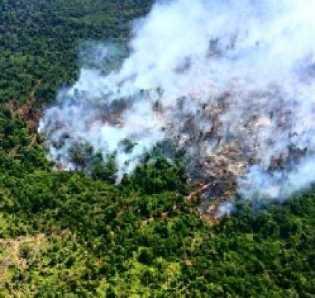 Sepanjang Januari-Februari 2018, Mapolda Riau Sudah Tangani 13 Kasus Karhutla