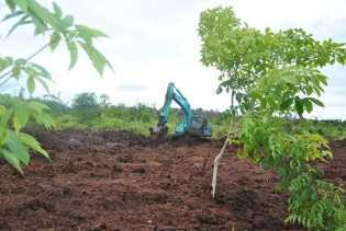 Izin HTI Dicabut, Rakyat Riau Sejahtera