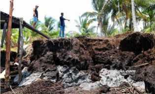 Cemas dengan Abrasi di Pulau Rangsang, Sopandi Tulis Surat ke Presiden RI