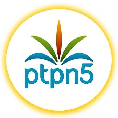 Selangkah Lagi, PTPN V Ditetapkan Tersangka Garap Kawasan Hutan