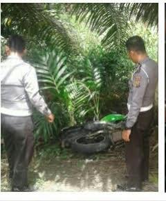Mengenaskan, Pengendara Sepeda Motor di Inhil Tewas Menabrak Pohon Pinang