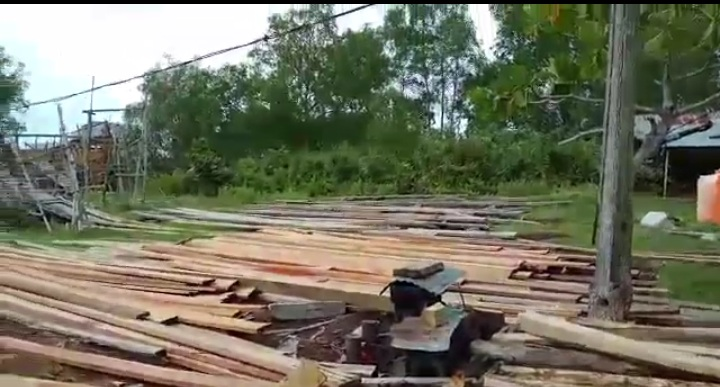 PT Diamond Raya Timber di Rohil Lalai, Lahan HGU Ada Aktifitas Ilegal Logging