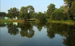Penasaran dengan Laporan Warga, Dewan Pelalawan akan Sidak ke Sungai Kerumutan