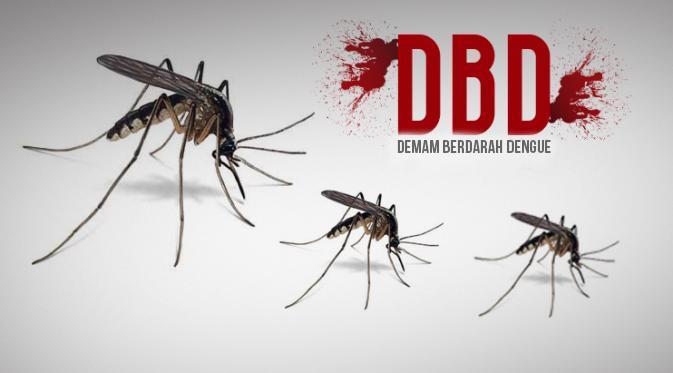 Di Tahun 2016 Penderita DBD di Inhil Sebanyak 199 Mayoritas Anak-anak