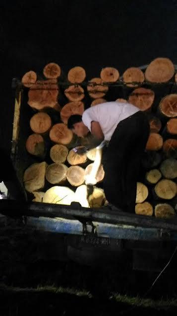 Warga Rohul, Angkut Kayu Hasil Hutan Tanpa Dokumen Ditangkap