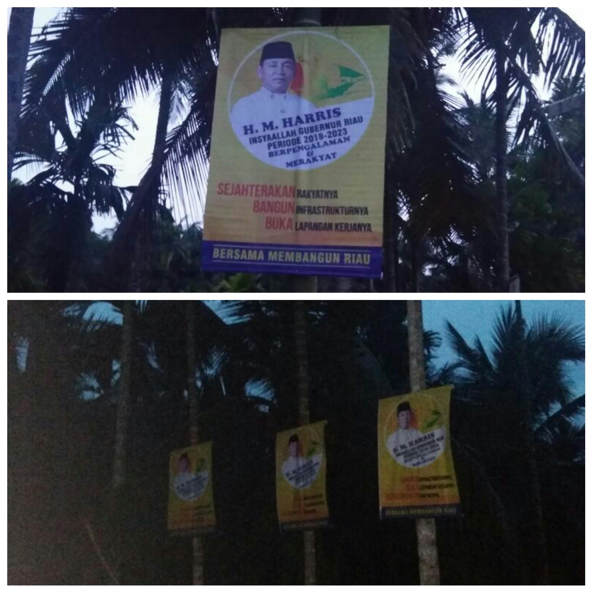 Pemasangan Poster Politisi Dinilai Kejam dan Sadis Menyiksa Pohon