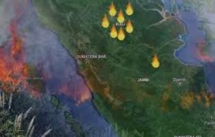 Jumlah Titik Panas di Riau Menurun Drastis