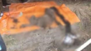 Mayat Wanita yang Ditemukan di Kebun Sawit di Dumai Diduga Korban Pembunuhan