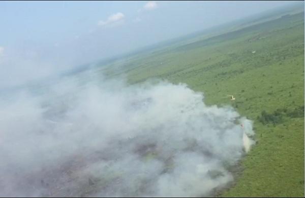 Karhutla di Riau Masih Terjadi, 2.462,16 Hektar Habis Dilalap Api